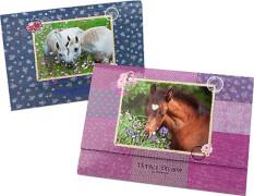 Depesche 5487 Horses Dreams Briefpapier in Fächermappe